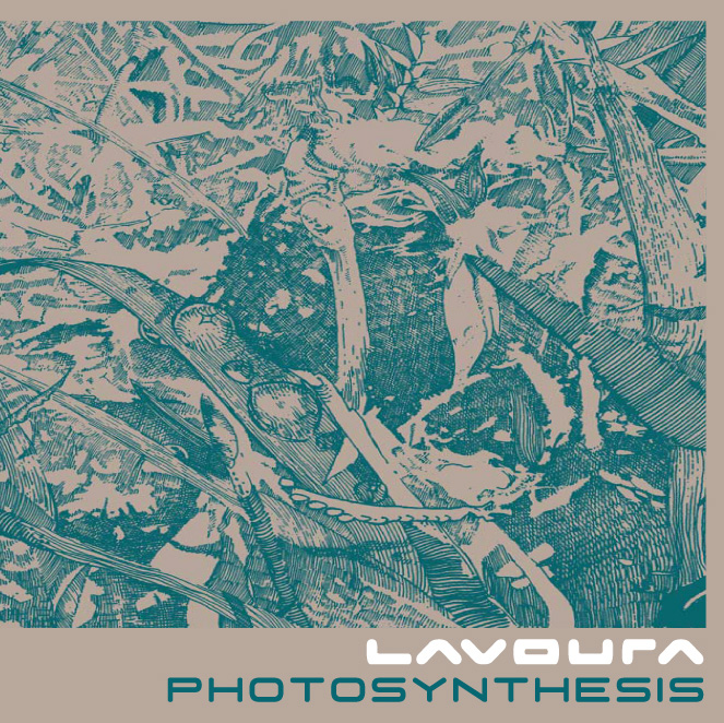 cover-lavoura-photosynthesis